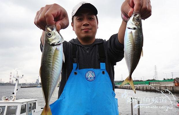《游钓世界—日本篇163》竹夹鱼