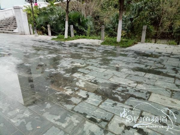 2017夜钓日记(16)