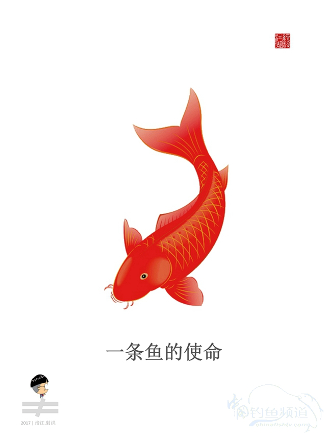 纯粹江湖|一条鱼的使命