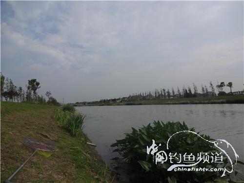 骑车钓鱼《钓鱼日记》(2017-05-20)