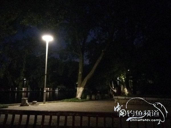 2017夜钓日记(26)