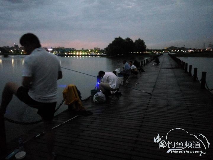夜钓南湖栈桥之二