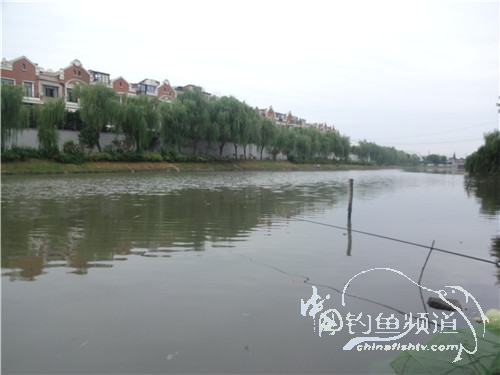 骑车钓鱼《钓鱼日记》(201