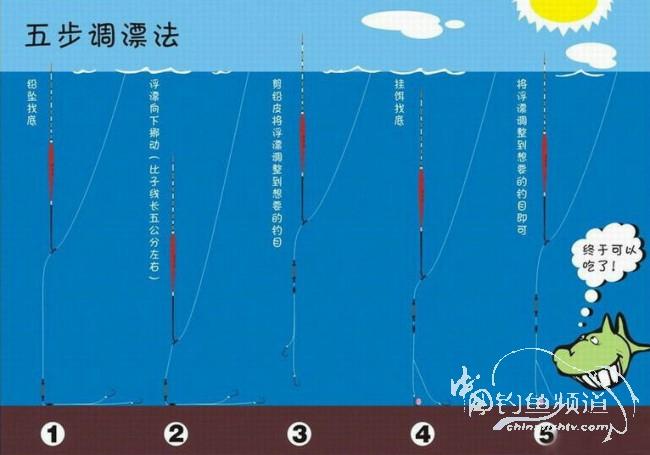 浮漂的种类和用途--图解 - 十年井绳 - 十年井绳博客