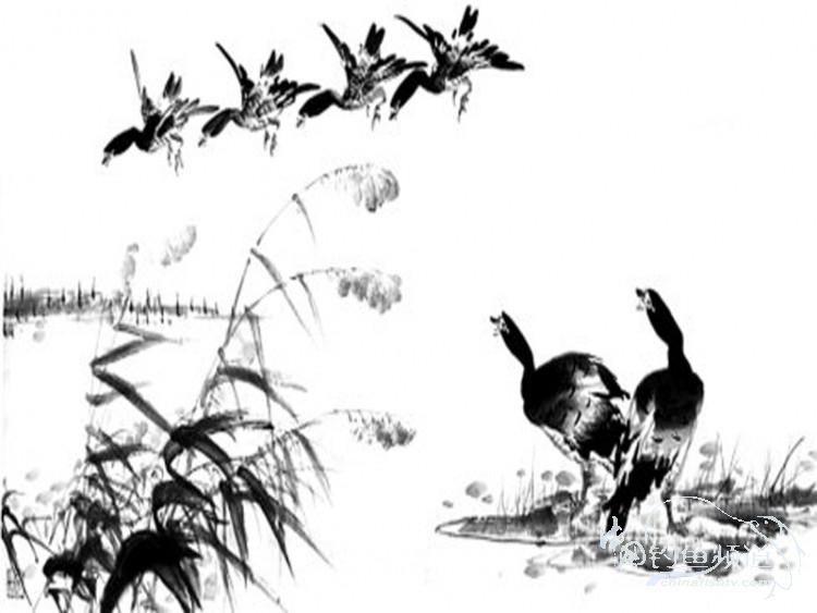 很巧合,在网上看到这个水墨画很适合江坝;江坝就是一滴墨,点水而化.