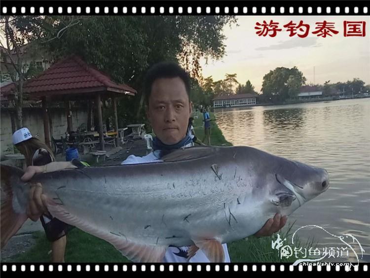 游钓泰国 中
