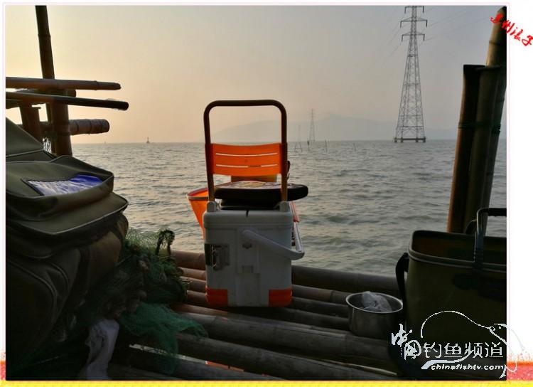 钓了半天,渔获只在一小时