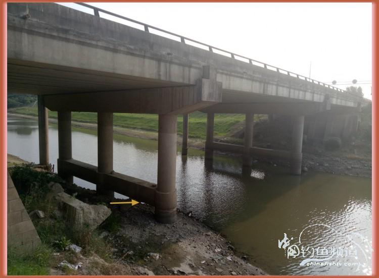 大桥底下好乘凉  换竿多次还跑鱼