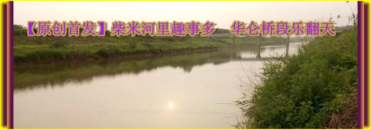 柴米河里趣事多  华仑桥段