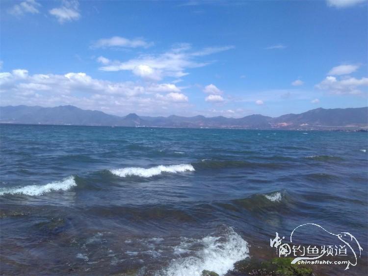 从抚仙湖到浦东,差旅间的