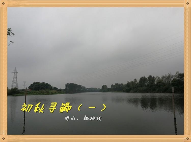 初秋寻鲫(一)